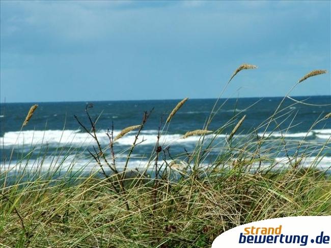 insel juist strand hinter der gra narbe strandbild juister strand. Black Bedroom Furniture Sets. Home Design Ideas
