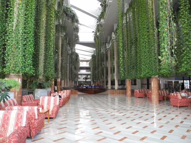 Hängende Gärten Hotelbild Hotel Be Live Playa La Arena